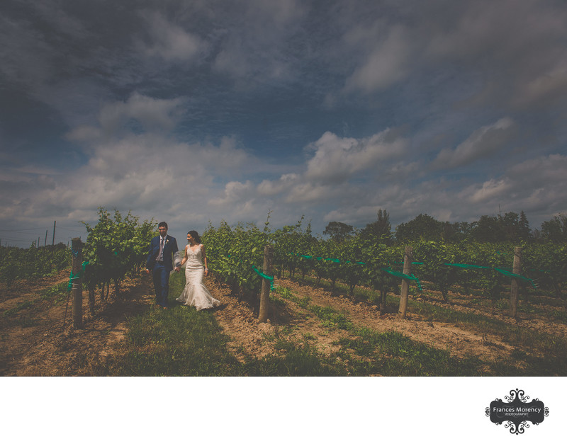 Rockway Vineyard Wedding Photographer