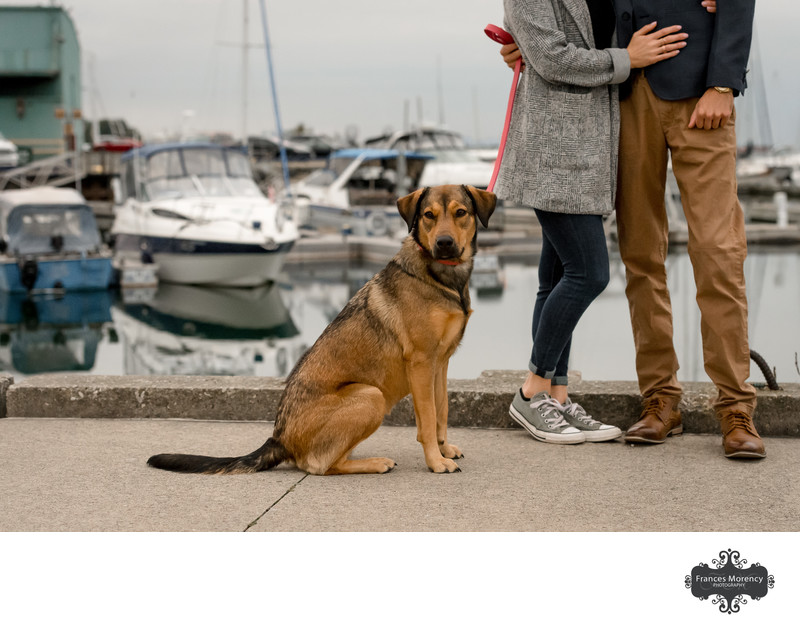 Mississauga Engagement Photographer with Pet