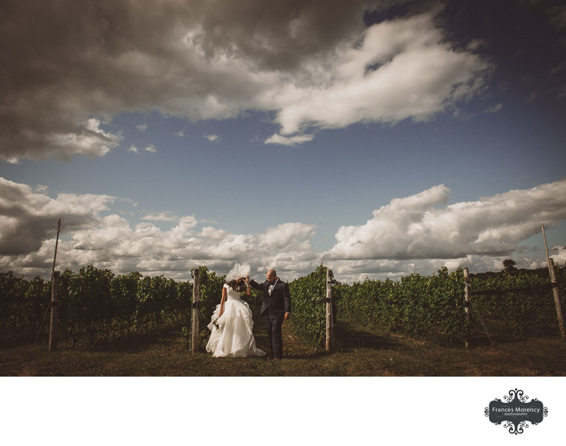 Orangeville Wedding at Adamo Winery