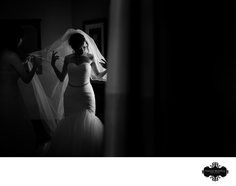 Creative Bridal Portrait at Barrie Wedding