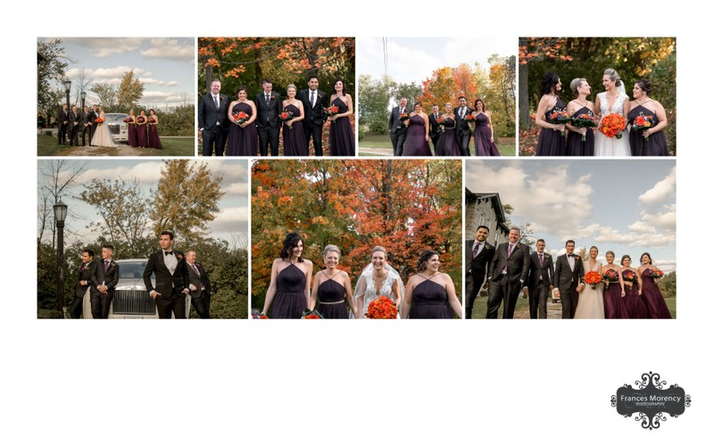 Wedding Party Photos: Springer Estate Photographer