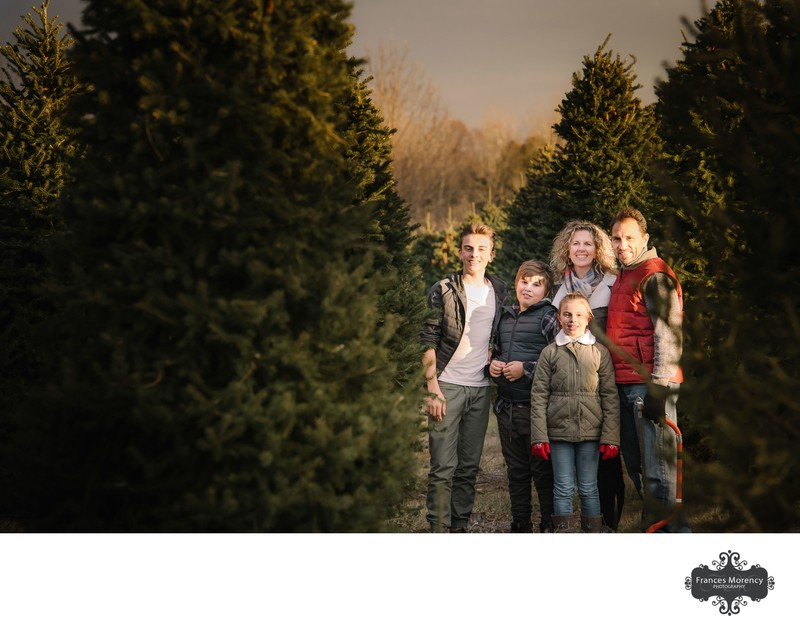Christmas Tree Cutting: Belfountain Family Photographer