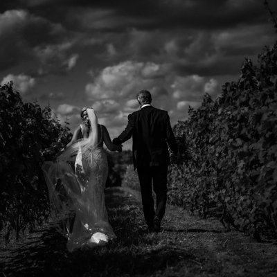 Journalistic Wedding Photographer:  Adamo Estate Winery