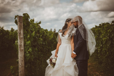 Wedding Portrait at Adamo Estate in Winery