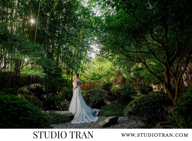 Bamboo Garden City Park Bridal Portraits