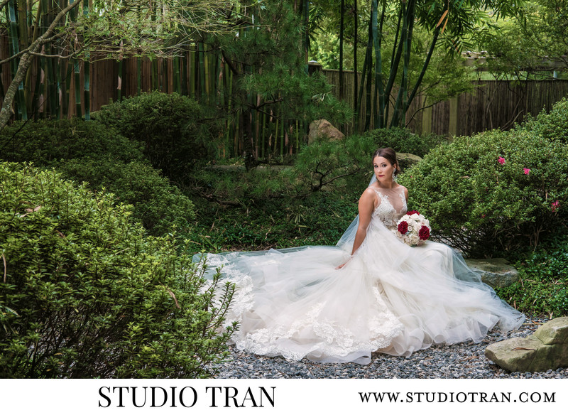 City Park Botanical Gardens Wedding Photographer