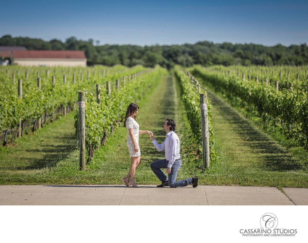 Engagement shoot at Raphael Vineyard