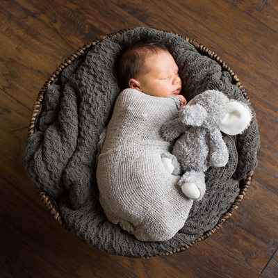 newborn boy with neutral color photos elephant