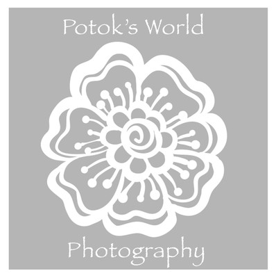 Potok's World Photography