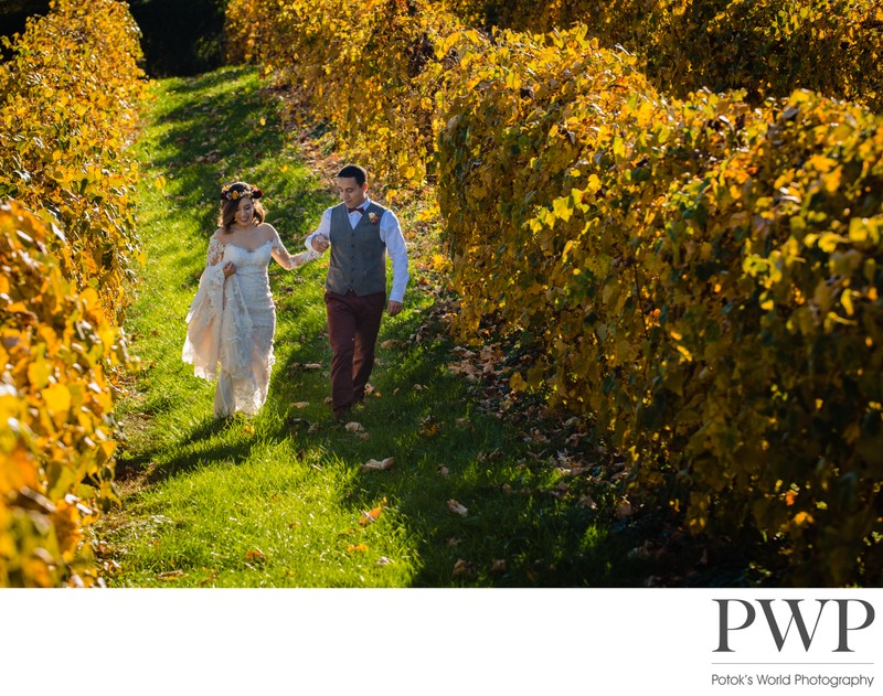 Bluemont Vineyard Wedding Photographer Northern VA