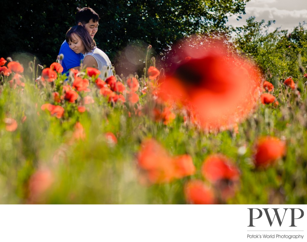 Poppy Field Engagement Session