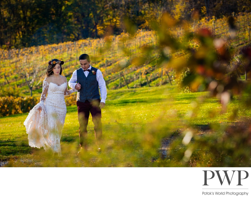Bluemont Vineyard Wedding Photos Northern Virginia