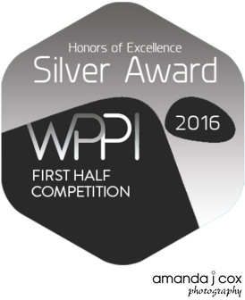 WPPI Silver Award First Half 2016 Competition