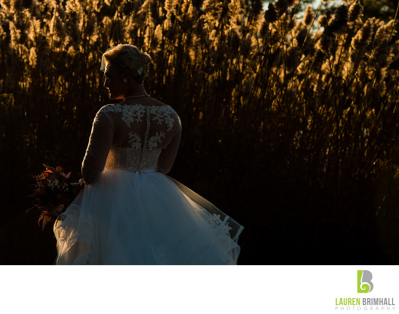 Bride at Sunset with Cattails