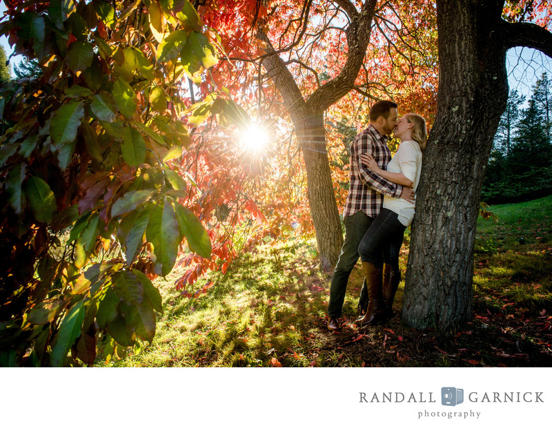 Arnold Arboretum Fall engagement inspiration