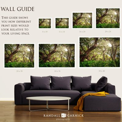 Print size wall guide