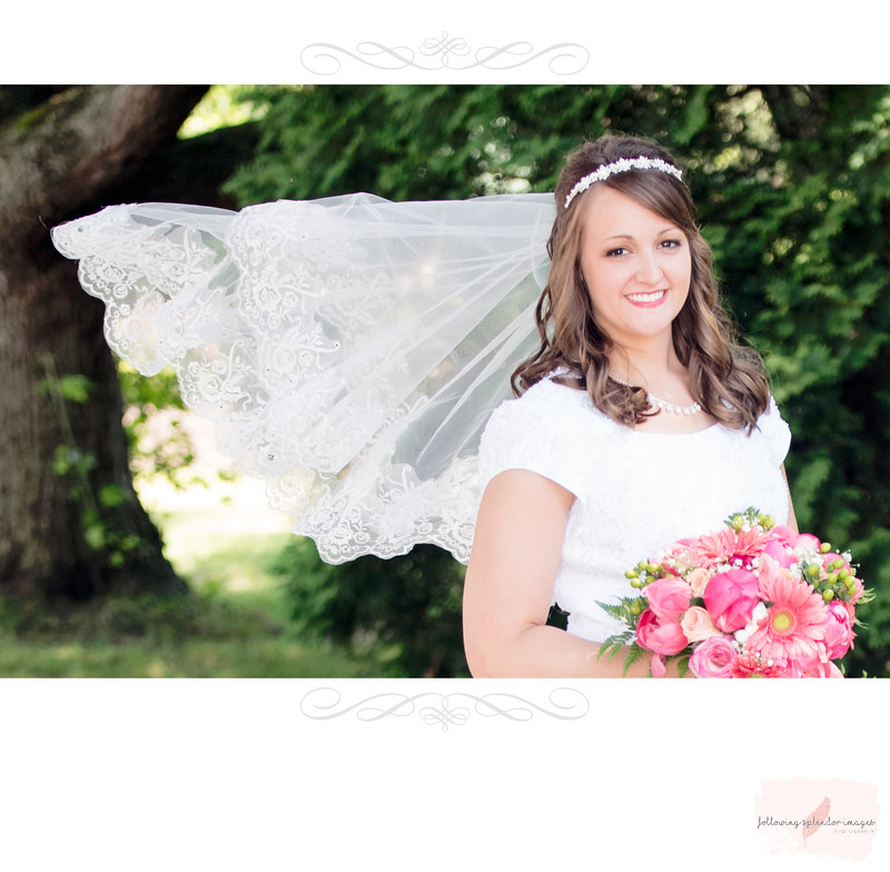 Wedding Veil Bridal Portrait