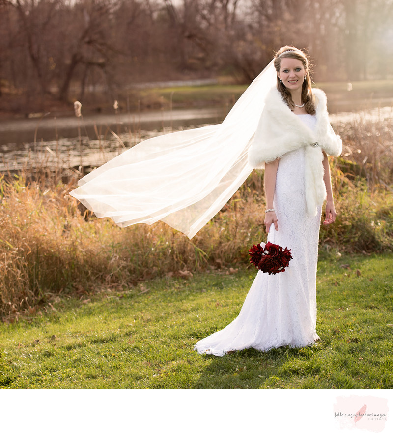 Perfect Bridal Portraits by Little Rock Photographer