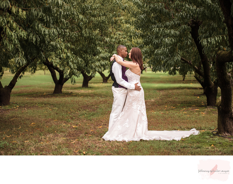 Bride and Groom Kissing in Peach Orchard