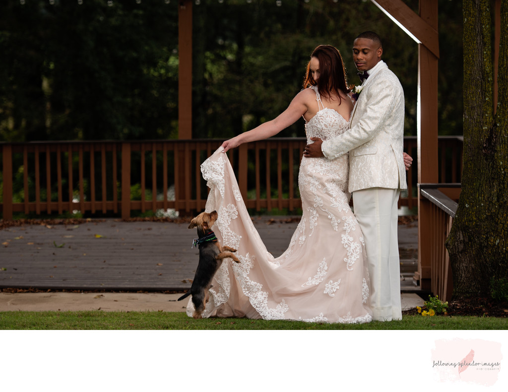 Bride and Groom and Little Dog