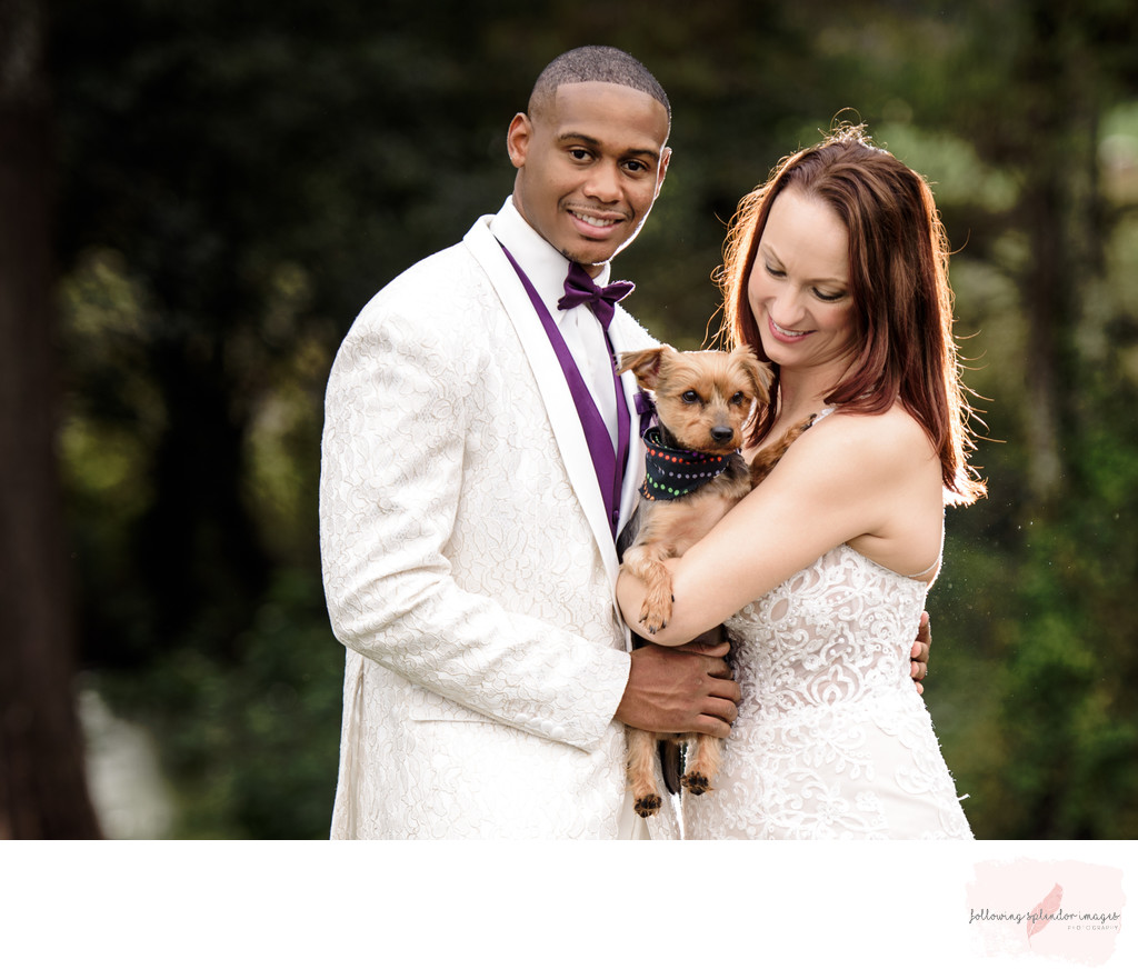 Bride and Groom with Fur Baby
