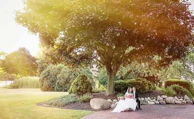 Bride and Groom Under Large Tree Portrait