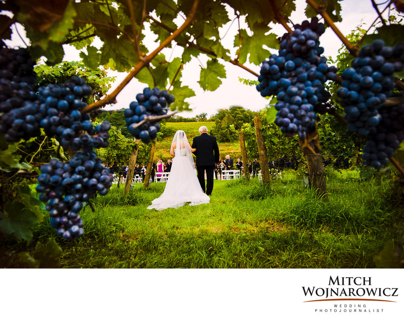 millbrook winery wedding photos