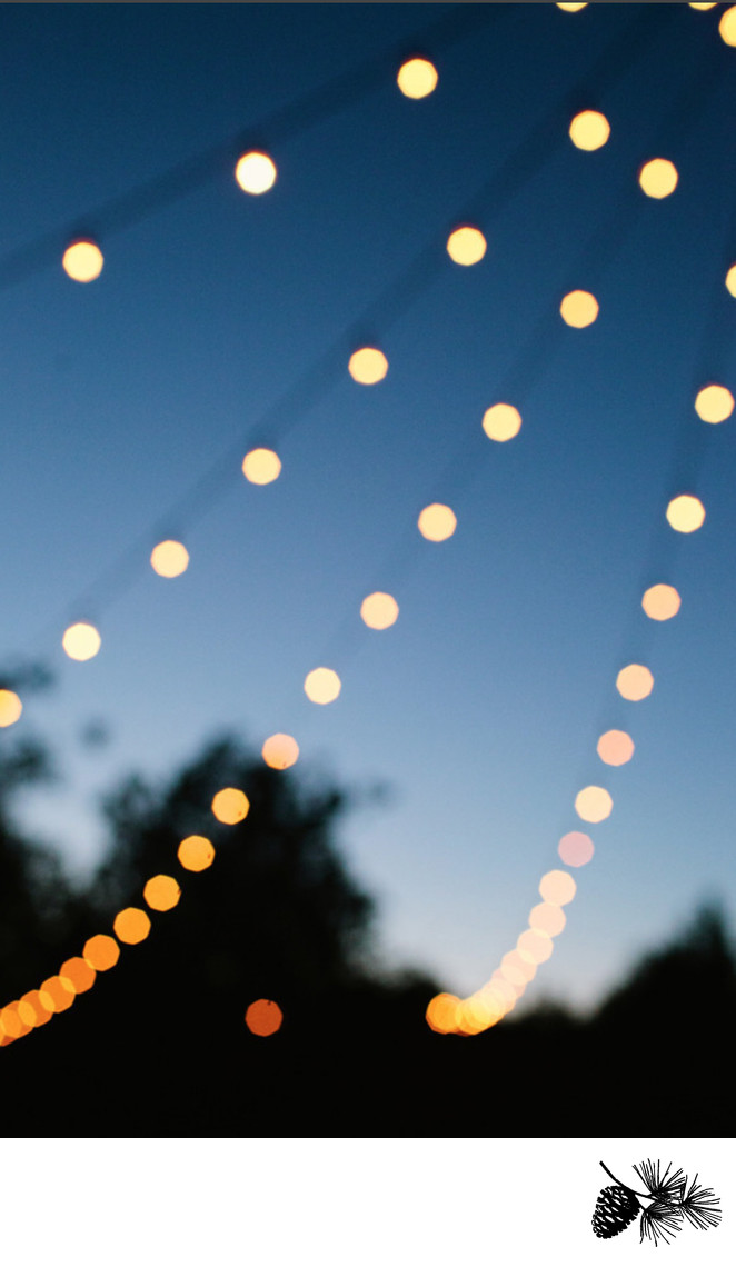 String Lights are ultra-romantic and pretty | Loblolly
