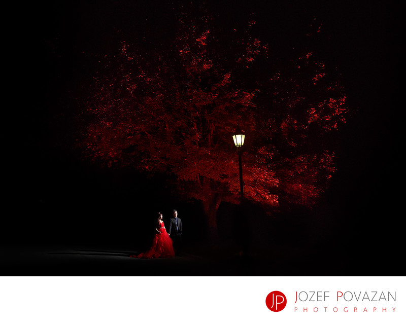 Swan e set night wedding photography by Jozef Povazan