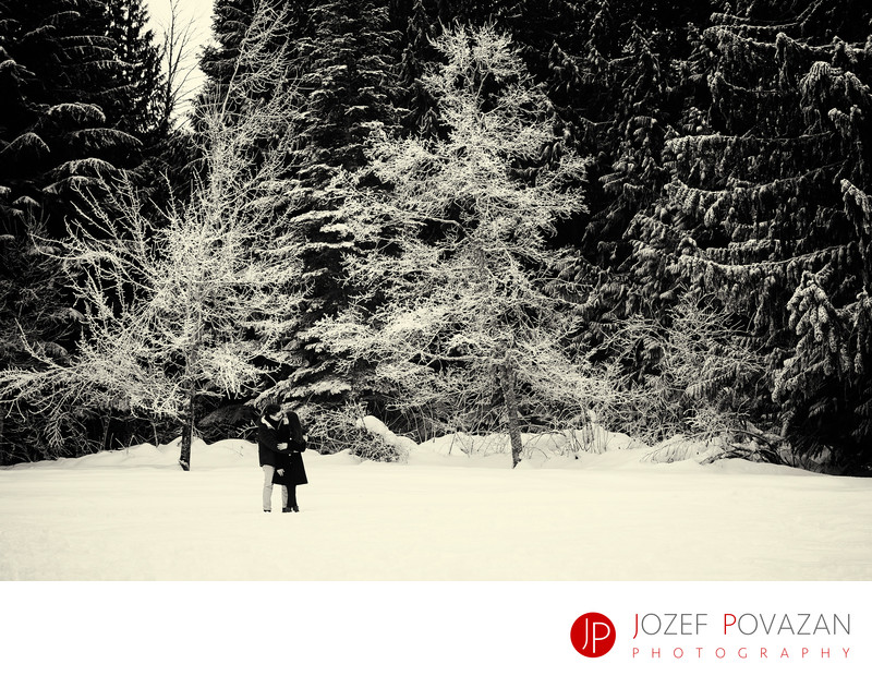 Whistler secret engagement proposal photography