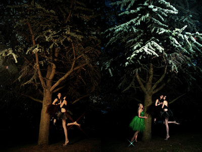 leeds fashion photographers - trees