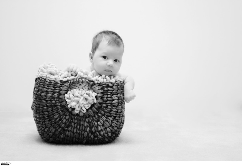 Baby in Basket Pictures Family Photographer Reno Tahoe