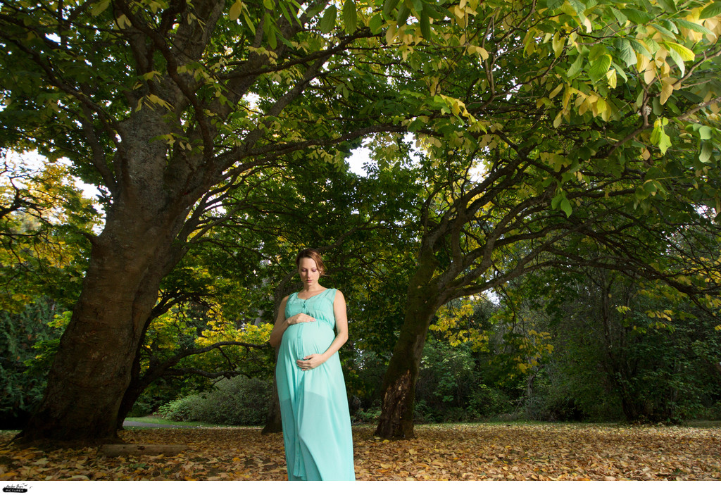 Maternity Pictures in Nature Reno Family Photographer