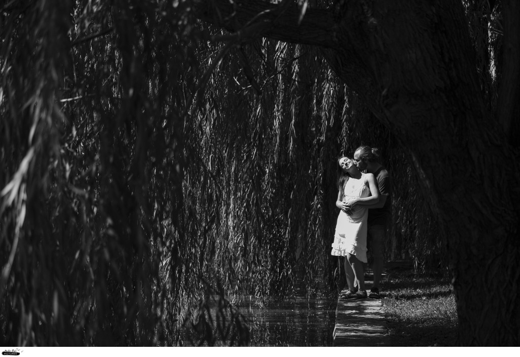Natural Engagement Photos Reno Tahoe Photographer