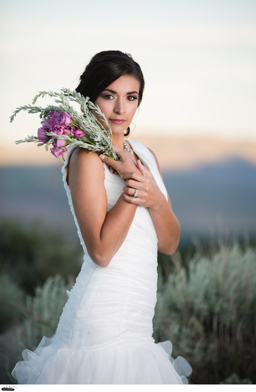 Classic Bridal Portrait With a  Modern Twist