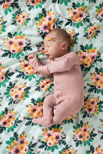 Pittsburgh Newborn Portrait Baby Girl on Floral Fabric