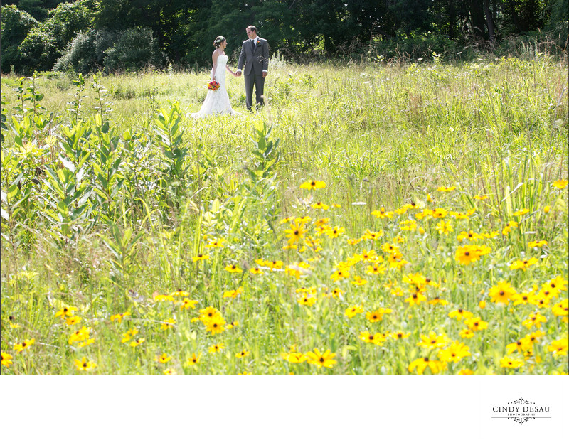Bride and Groom in Field of Yellow at Holly Hedge Wedding