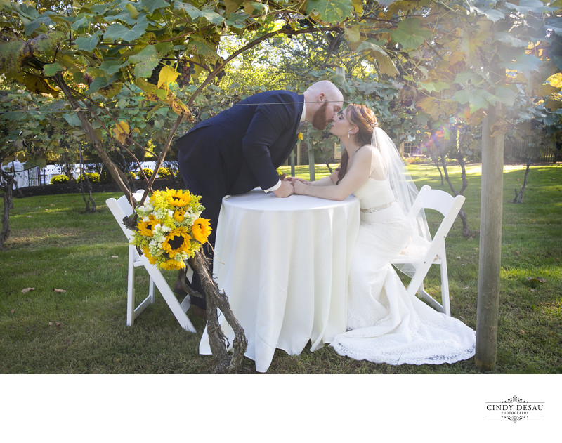 Washington's Crossing Wedding Kiss in the Vineyard Photo