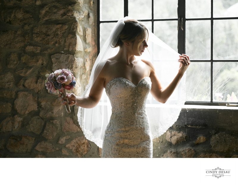 Picturesque Photo of Bride at Holly Hedge Estate