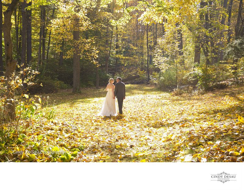 Scenic Wedding Photo in a Fall Meadow in Bucks County