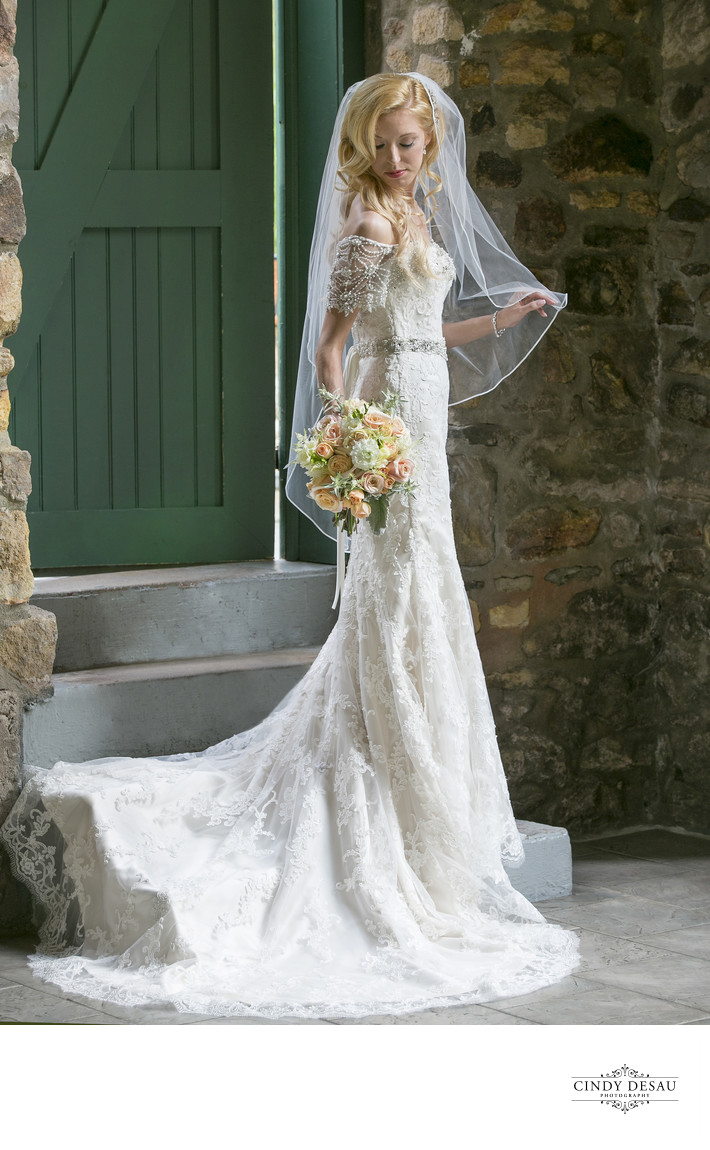 Classic Bridal Portrait in New Hope