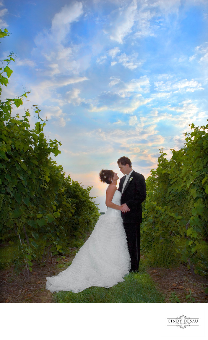 Crossing Vineyards Wedding Photographer