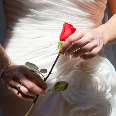 Stunning Detail Photo of Bride's Dress and Red Rose