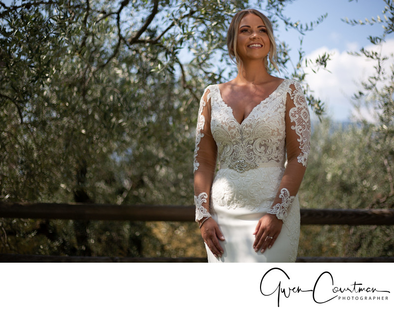 Olive Trees Malcesine Bride Lake Garda