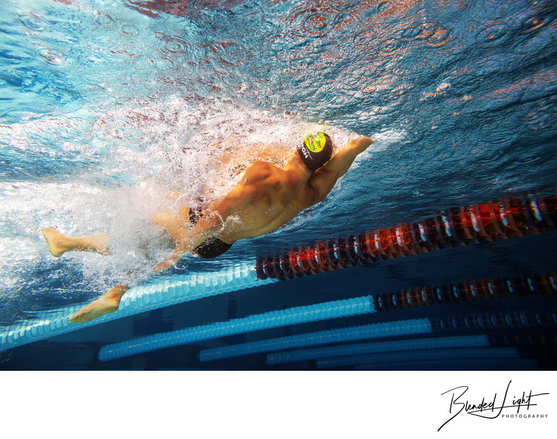 High School Senior swimmer backstroking image