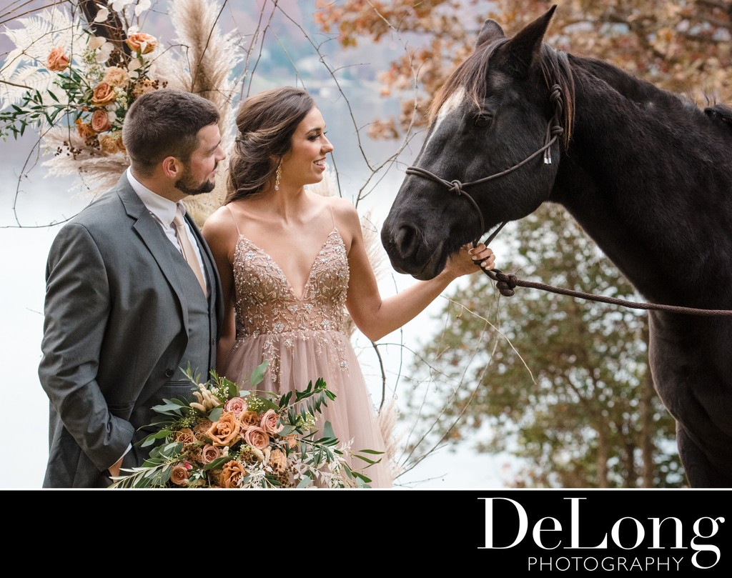 Weddings with Horses