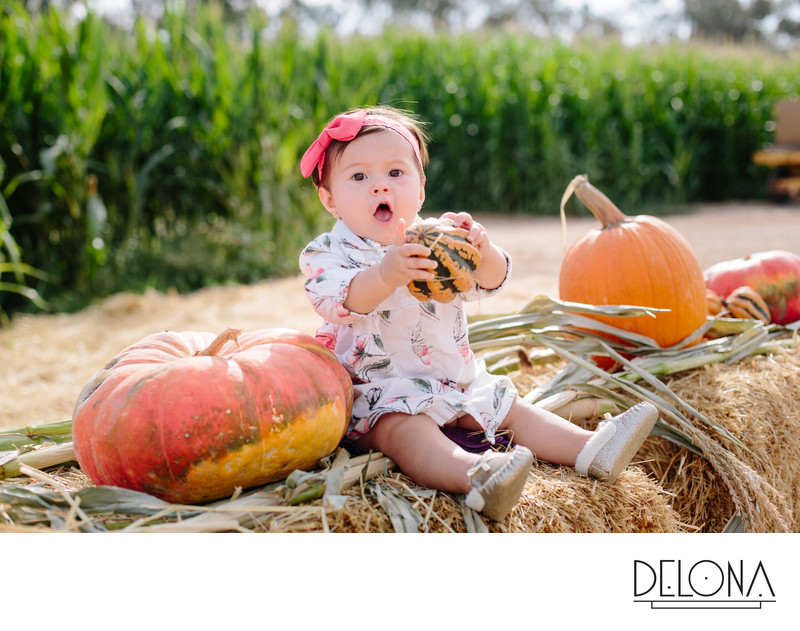 Mini Session Pumpkin Patch Fresno