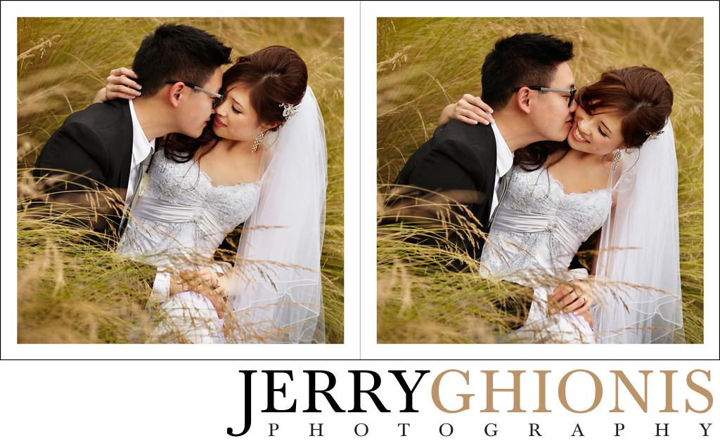 Bride and Groom in High Grasses