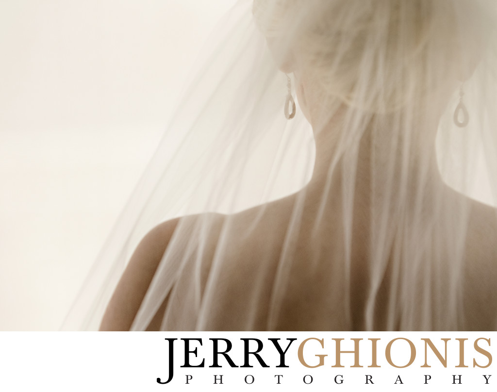 Bridal Details - Veil and Earrings