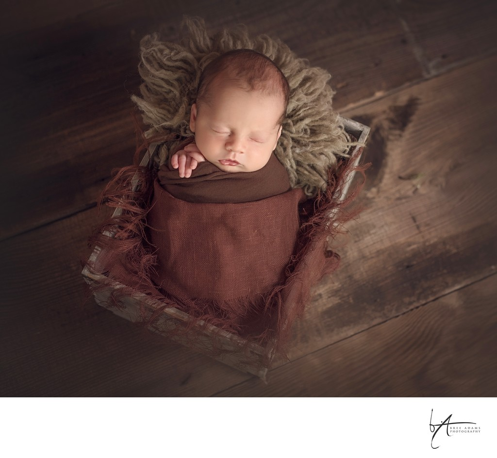 baby photographer Arilington Texas